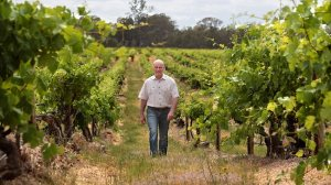Tahbilk wineries